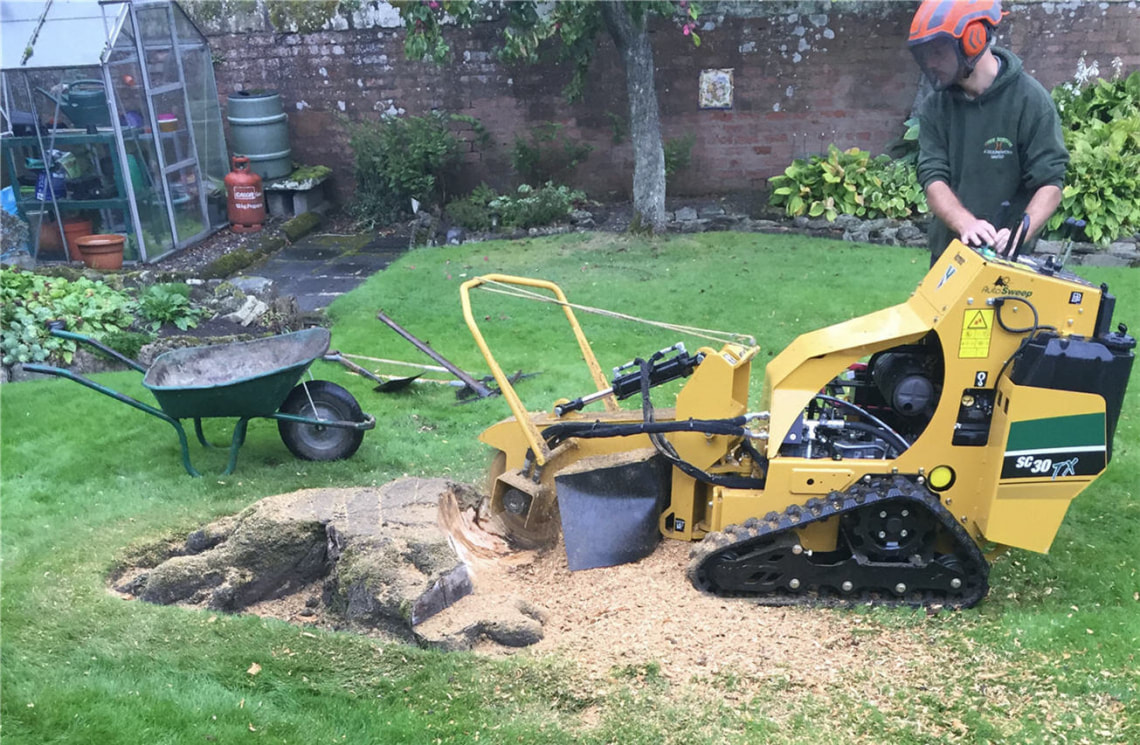 Chester-tree-stump-removals